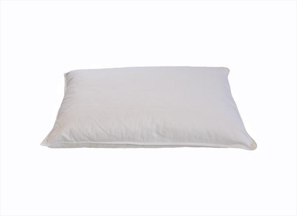 Sleep & Dream kussentje 65% dons 35x50